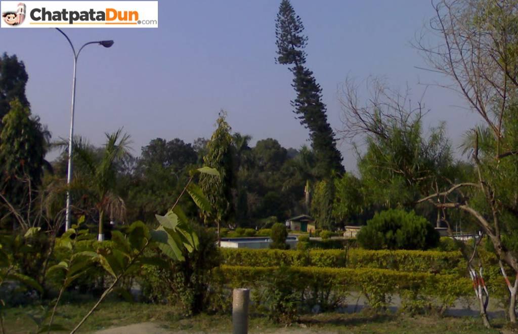 Gandhi Park, DehraDun