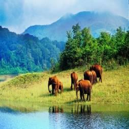 Deoban, Uttarakhand