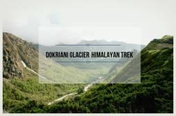 Dokriani Glacier Himalayan Trek