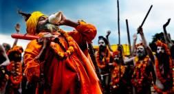 Haridwar Ardh Kumbh 2016