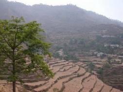 Bhalu Dam, Ranikhet, Uttarakhand