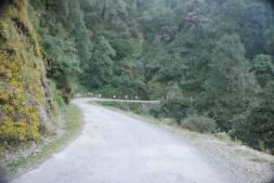 Guano Hills, Nainital, Uttarakhand