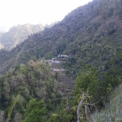Viplove bhardwaj